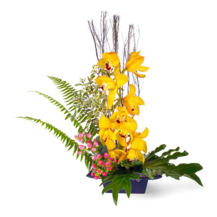 Zen cymbidium orchid Arrangement