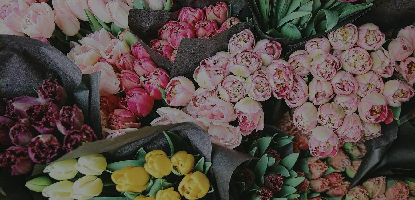 Clovis Flowers