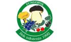 Fungopol - Grzyby - najwyższa jakość produktów leśnych