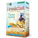 JOANNUSMOLEN Breakfast Płatki zbożowe mix z teff instant (bez gotowania) BIO 300g