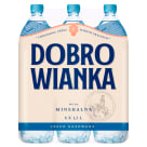 DOBROWIANKA Lightly sparkling mineral water 9 l