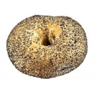 PUTKA Bagel with poppy seeds 80 g
