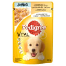 PEDIGREE Junior Food for Dogs with Chicken and Rice in Jelly 100 g