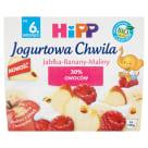 HIPP Deser jogurtowy Jabłka-Banany-Maliny - po 6 miesiącu BIO 400g