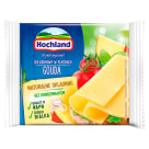 HOCHLAND Cream cheese in Gouda slices 130 g