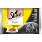 SHEBA Delicato Pokarm dla kotów - Drobiowe dania w galaretce (4 sztuki) 340g