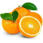 FRISCO FRESH  Pomarańcze deserowe 4-6szt. 1kg