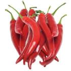 FRISCO FRESH Papryka pepperoni czerwona 10-12szt. 150g