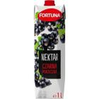 FORTUNA Nektar Czarna Porzeczka 1l