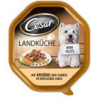 CESAR Pokarm dla psa z drobiem i warzywami w sosie (tacka) 150g