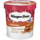 HAAGEN-DAZS Salted Caramel Lody 500ml