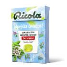 RICOLA Cukierki ziołowe - Alpejska Świeżość 40g