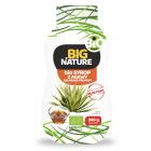 BIG NATURE Syrop z agawy Salamanea Premium BIO 340g