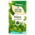 HERBAPOL Zielnik Polski Mięta 20 torebek 40g