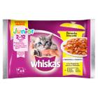 WHISKAS Junior Potrawka Pokarm dla Kotów - Smaki Drobiowe w Galaretce 340g