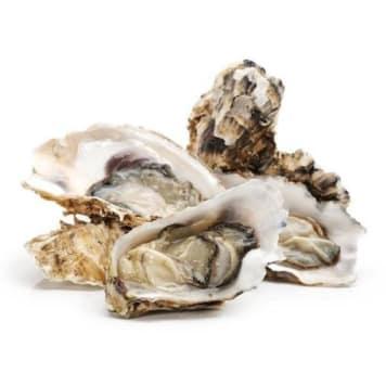 Ostrygi świeże najwyższej jakości od Frisco Fresh