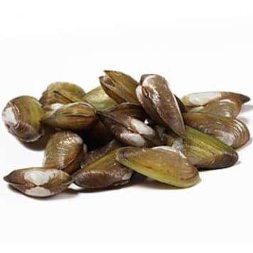 Małże hiszpańskie - Frisco Fish