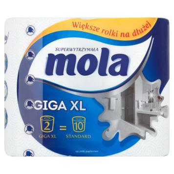 Ręcznik papierowy - Mola. Doskonały pomocnik przy codziennym sprzątaniu.