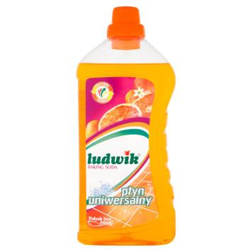 Uniwersalny płyn do mycia - Ludwik. Produkt który doceniła już niejedna pani domu.