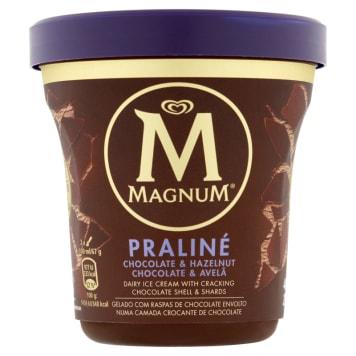 MAGNUM Vanilla ice cream with pralines 440ml
