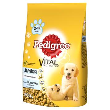 PEDIGREE Junior Pokarm Suchy Pełnoporcjowy dla Psów Średnich Ras z Kurczakiem 500g