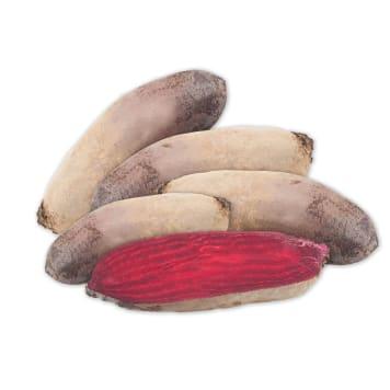 FRISCO FRESH Burak podłużny czerwony 5-6szt. 1kg