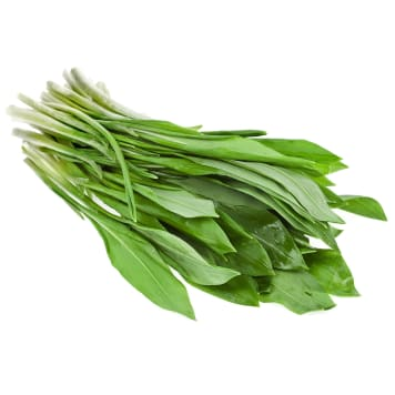 FRISCO FRESH Bear garlic - fresh cut 200g