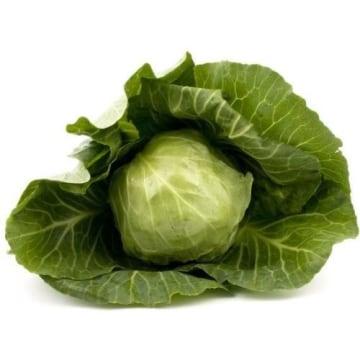 Kapusta młoda - Frisco Fresh to warzywo często stosowane w polskiej kuchni.
