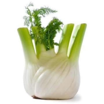 Koper włoski fennel 1 szt - Frisco Fresh