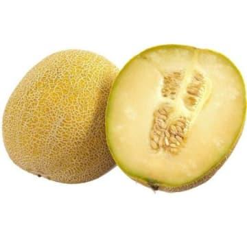Melon Galia – Frisco fresh to zdrowy i smaczny melon siatkowy, doskonały do deserów i sałatek.