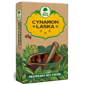 Cynamon laski - Dar Natury