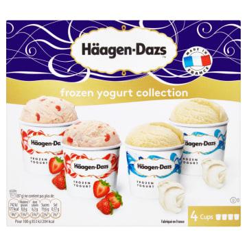HAAGEN-DAZS Lody Frozen yogurt collection 4x100 ml 1szt