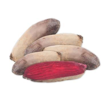 FRISCO FRESH Burak podłużny czerwony 5-6 szt. 1kg