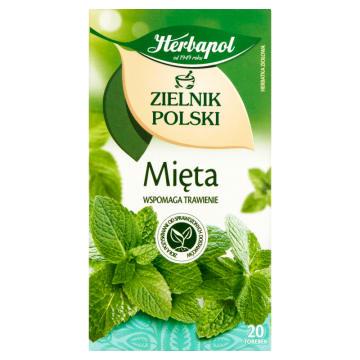 Mięta - HERBAPOL Zielnik Polski