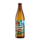 INNE BECZKI Piwo Cherry Elephant (butelka bezzwrotna) 500ml