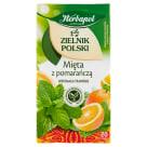 HERBAPOL Zielnik Polski Owoce i Zioła - Mięta z Pomarańczą 20 torebek 1szt
