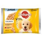 PEDIGREE Junior Pokarm dla Psów - Kurczak/Ryżem i Wołowina/Ryż (4 saszetki) 400g