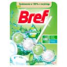 BREF Power Aktiv ProNature Zawieszka do WC - Mięta i Eukaliptus 50g