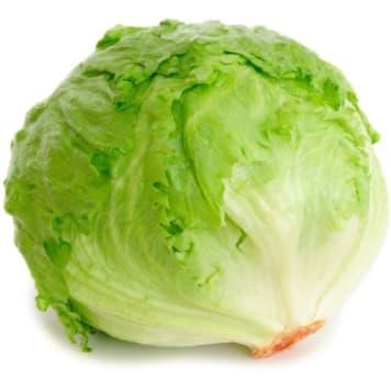 Sałata lodowa Bio - Frisco Organic. Świeża sałata o łagodnym smaku.