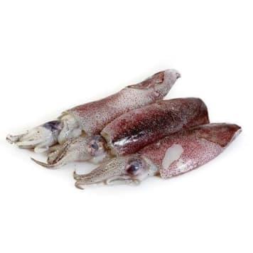 Kalmary Baby - Frisco Fish