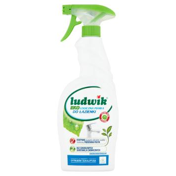 LUDWIK Ekologiczna pianka do czyszczenia łazienki 750ml