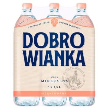 DOBROWIANKA Woda mineralna niegazowana 9l