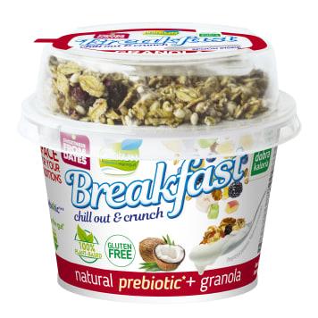 PLANTON Breakfast Probiotic Produkt kokosowy z granolą 170g