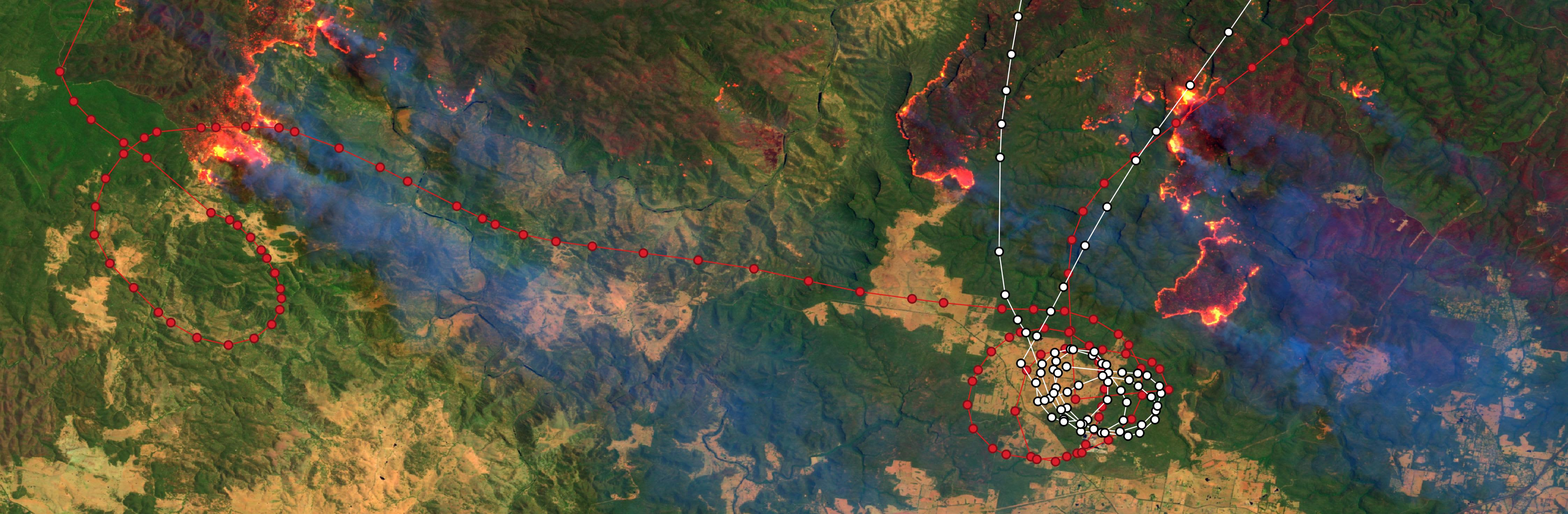 Fig.1 - Sentinel-2A from the 31.12.2019 00:06:06 UTC with NSW Rural Fire Service Plane Routes - BMBR 137 & BMBR 138