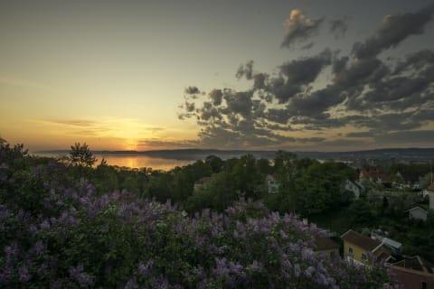 Utsikt över Vättern från Dunkehalla. Grönskande växtlighet och himlen tar upp större delen av bilden. Solen håller på att gå upp och avspeglar sig i Vättern.
