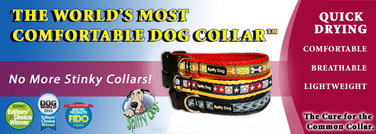 spiffy dog collars