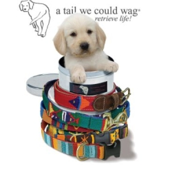 tail we could wag