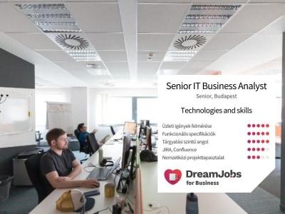 Senior IT Business Analyst @ BlackBelt Technology
