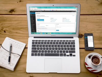 Wordpress Fejlesztő @ Netwerk Media Kft.
