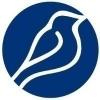 Bluebird International Zrt.